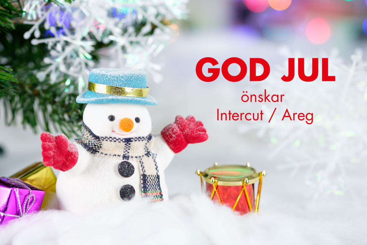God Jul 2019 Intercut / Areg